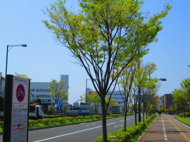 IMG_6996.JPG