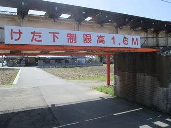 IMG_9119.JPG
